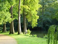 Mönchengladbach-Volksgarten - ein kleines Paradies (borntobewild1946) Tags: park nrw nordrheinwestfalen rheinland mönchengladbach weiher volksgarten copyrightbyberndloosborntobewild1946 mönchengladbachvolksgarten