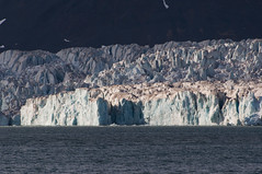 Glaciar (faltimiras) Tags: ocean ice norway circle svalbard noruega polar artic