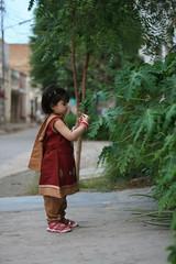 Aliza on Eid [MR] (Engineer J) Tags: pakistan 2 portrait plants baby flower girl face closeup garden dress outdoor year eid junaid m festivity aliza rashid bahawalpur engr bahwalpur