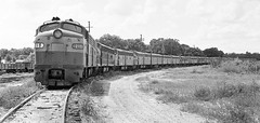 Amtrak collection of out of service EMD E-units awaiting disposition at the yard in Wildwood, Florida, mid 1970's (alcomike43) Tags: old railroad blackandwhite bw classic yard vintage ties photo diesel tracks engine trains historic negative amtrak photograph rails locomotive sal e9 e8 ballast rightofway scl dieselengine seaboardcoastline railroadyard emd freightcars passengertrains roadbed diesellocomotive dieselelectriclocomotive seaboardairline wildwoodflorida