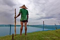 the guardian ! (emon chowdhury.) Tags: canon sylhet bangladesh hoar srimongal