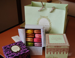 Ladure sweets  (Craia) Tags: paris cake shop patisserie sweets macaroons ladure