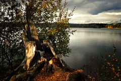 (Sameli) Tags: autumn lake nature water suomi finland landscape still silent view calm hush hvittrsk kirkkonummi
