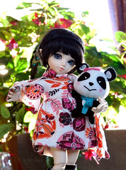 My friend (I'm a raindrop) Tags: blue plant flower cute green ball toy toys eyes doll panda dolls dress little blueeyes small plush fairy wig tiny wigs bjd selfmade fairyland default plushtoy fee jointed leeke defaultfaceup chiwoo chiwooelf naturalskin littlefee littlefe chiwoogirl