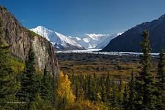 Destination (Ed Boudreau) Tags: clouds river fallcolors bluesky glacier conifer snowpeaks alaskamountains