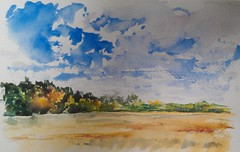 Color Beginning (Artist Naturalist-Mike Sherman) Tags: rural landscape farmland pleinair midmichigan transparentwatercolor paintingonlocation