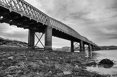 "Montrose Rail Bridge B&W • <a style=""font-size:0.8em;"" href=""http://www.flickr.com/photos/40272831@N07/8020082192/"" target=""_blank"">View on Flickr</a>"