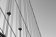 Cables (Throwingbull) Tags: new york city nyc bridge urban white ny black monochrome support cables manhatten