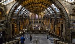 Glow (Perez Alonso Photography) Tags: history museum london glasses staris