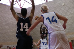 USA vs France (Armed Forces Sports) Tags: 2016 cism world womens military basketball championship camp pendleton ca armed forces sports