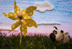 Pug outing (Kakeart) Tags: pug secret life pets slp windmill dog pet outdoor