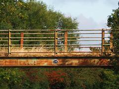rusty and blue (mark.griffin52) Tags: olympusem5 england buckinghamshire slapton waterways grandunioncanal bridge118 rust iron bridge
