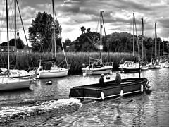 StourBoats (Hodd1350) Tags: christchurch dorset riverstour buoys ferry masts reeds yachts men males wake bw wb blackwhite mono whiteblack shore olympus zuikolens ome1 reflections buoyant