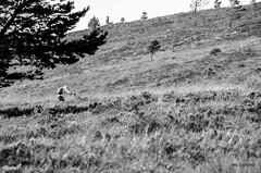 lone walker (cornucopiae) Tags: highlands greatglen