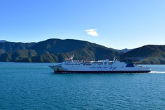 Passing another Interislander ferry