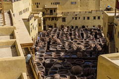 Tannerie in Fez