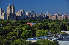 Central Park, New York City (Kelly Nigro) Tags: metropolitanmuseumofart psycho nyc globalcitizen centralpark trees newyorkcity