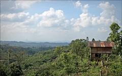 Rumah (pondok) petani (Hafid Wanala) Tags: merangin landscape sumberdaya alam lestari