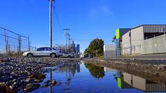 Seattle puddle (rve13) Tags: galaxys6 puddle seattle safecofield