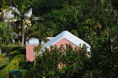 aGilHDSC_4339 (ShootsNikon) Tags: bermuda ocean atlantic subtropical beaches nature colorful island paradise