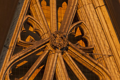 Cologne Cathedral - 6   Green man on the west front at sunset (Paul Dykes) Tags: church architecture germany deutschland gothic masonry 19thcentury decoration cologne stonecarving kln greenman mediaeval klnerdom colognecathedral ornamentation nineteenthcentury 13thcentury 15thcentury thirteenthcentury westfront fifteenthcentury