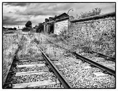 Tracks (AlanP) Tags: birkenhead