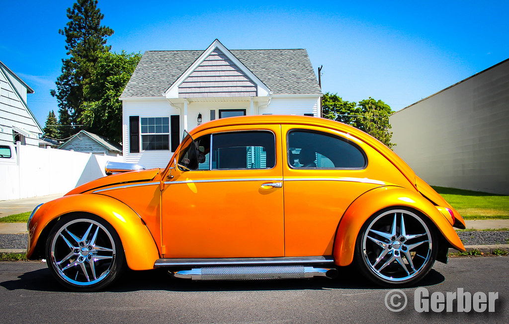 The World's Best Photos of mean and vw - Flickr Hive Mind