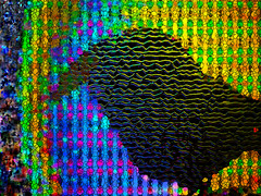 When the Raven Heard Morning Light. (eotiv) Tags: morning distortion abstract bird lines falling rays raven blackbird multicolor