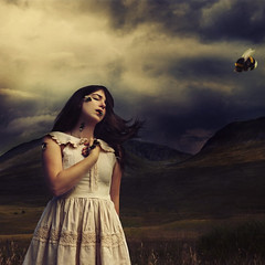 invited guests (brookeshaden) Tags: animals fairytale dark scotland europe bees surreal fineartphotography childlike brookeshaden