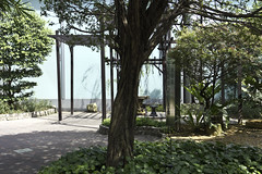 Bonsai Garden in Sunetc City in Singapore (Ashish A) Tags: trees shadow plants plant tree green garden asian singapore asia path pole greenery poles treebranch sunteccity bonsaigarden metalpoles suntecmall sunteccenter