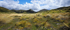 Lindis Pass, New Zealand (AtomicZen : )) Tags: trip travel blue summer vacation sky cloud mountain mountains tourism nature beautiful clouds spectacular landscape outdoors island scenery view south scenic southern zealand journey