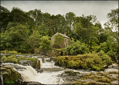 CENARTH FALLS AND OLD MILL (ninja nan1) Tags: uk trees house wales nikon carmarthenshire rocks waterfalls watermill d800 cenarth riverteifi nikon2470mmf28 ninjanan