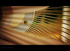 """I am a fan 40c/52 """"abstract"""" (outtake 3) (explored) (Raf Degeest Photography) Tags: abstract canon fan explore 2012 week40 sliderssunday 522012 52weeksthe2012edition weekofseptember30"""