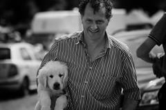 At the dog show (Frank Fullard) Tags: frankfullard fullard dog dogshow show crossmolina mayo candid street portrait pup puppy happy irish ireland