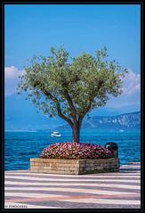 Blick auf den Gardasee (P.Hcherl) Tags: lazise veneto italien it 2016 nikon d5300 tamron tamron16300mmf3563diiinafvcpzdmacro rahmen blauerhimmel gardasee lagodigarda