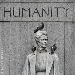 No Respect (James Neeley) Tags: london edithcavellstatue humanity pigeons jamesneeley