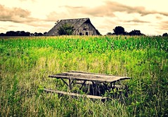 the break place...(HBM) (BillsExplorations) Tags: bench benchmonday picnictable break barn barnsandfarms field selectivecolor green corn abandoned forgotten vintage abandonedfarm missouri
