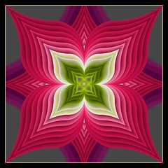 RedPink flower (crescentmoongal) Tags: red abstract symmetrical