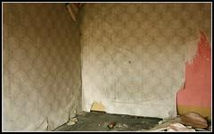IMG_5872 (jozwa.maryn) Tags: komino bornesulinowo opuszczone abandoned miasto town duch ghost westfalenhof blokowisko