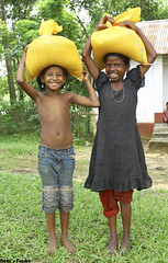 Shall we smile? (Quazi Neal) Tags: children kids needy poor relief teaestate teagarden