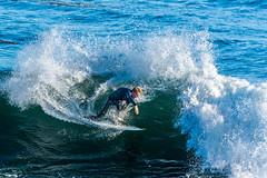 ArchitectGJA-4297.jpg (ArchitectGJA) Tags: lighthousepoint surfing californiababy hurley wetsuit santacruz ripcurl xcel lighthousefield california beach marineanimals coast cliffs waves streetphotography patshaughnessy surfingsteamerlane coastlife steamerlane oneill montereybay