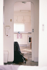 When can we go home? (Katie Tarpey) Tags: stranded cabin caravanpark bored bernesemountaindog winniethebernesemountaindog film kodak kodakgold400 nikonfm10 nikkor50mm14 traralgon victoria winter