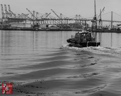 Port Pilot Mono (*PhotoByJohn*) Tags: 5d 5dmkii california losangeles other sanpedro bw blackandwhite canon5dmkii harbor losangelesharbor mono monochrome photobyjohn port portoflosangeles portpilot portpilotboat stephenmwhite workboat