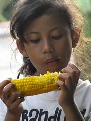 little girl is eating corn (aradearofixs) Tags: littlegirl eating corn girl insect love