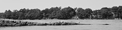 Eternal Maine 02 (smilla4) Tags: ledge seagull mainecottages bustinsisland cascobay maine blackandwhite monochrome