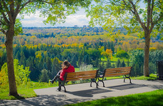 Lady in Red (LornaTaylor) Tags: copyright2016lornataylor lornataylor taylorimagesca lornataylorphotography ladyinred trees bench city autumn fall windy leaves park lightroom nikon 50mm d7000 edmontonrivervalley edmonton rivervalley