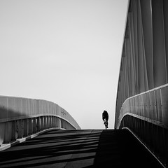 (Svein Nordrum) Tags: square squareformat bw blackandwhite monochrome nero noir bicycle bridge white black silhouette contrast perspective explore explored