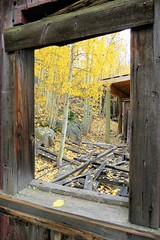 Ruined Railcar (Patricia Henschen) Tags: chaffeecounty sawatch range mountains mountain aspen autumn fall color gold silver mine mines mining ruins ghosttown stelmo mtprinceton chalkcreek nathrop colorado canyon sanisabelnationalforest railcar railroad railroadequipment boxcar denversouthparkpacificrr grade trail leafpeeping fallcolor pathscaminhos county road backroad