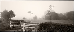 Six Days after the Show - Signs to Nowhere (Regular Rod) Tags: morning light panorama mist monochrome derbyshire peakdistrict bakewell ilfordfp4 lonelyroad justonelook kodakhc110 holgaheads ysplix bakewellshow favouritecapture
