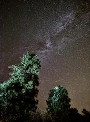 Milky Way and Meteor (Frank Knapp) Tags: canon shower meteor 2012 perseid ef1740mmf4l 5dmarkii frankknapp